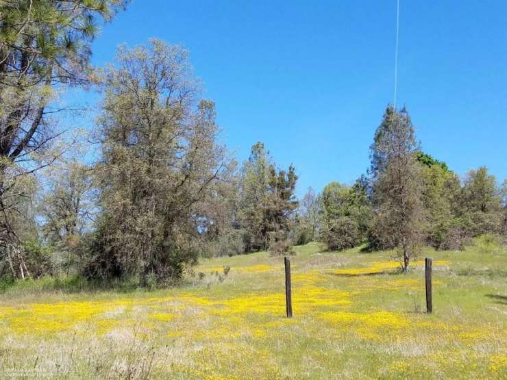 11278 Godfrey Lane, Grass Valley