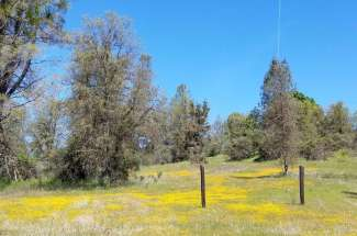 11278 Godfrey Lane, Grass Valley