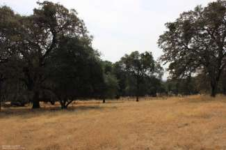15393 Oak Meadow Road, Penn Valley, CA