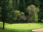 altasierra-golf