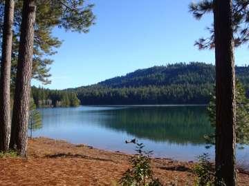 Lake Front Real Estate Properties