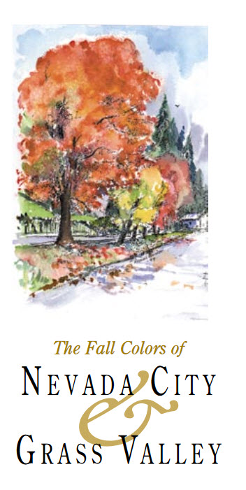 Fall-colors-NC-GV